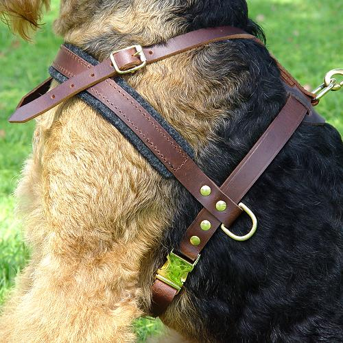 Tracking dog harness made of leather