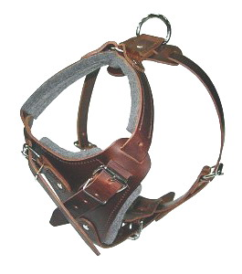 Agitation Leather Dog Harness Padded