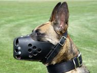 Leather dog muzzle perfect for Malinois M31