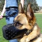 "Leather dog muzzle ""Dondi"" style For German Shepherd Dog - M5"
