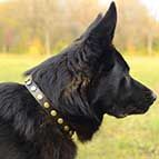 German Shepherd Studded Leather Dog Collar