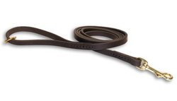 Handcrafted Leather Dog Leash with Floating Brass O-ring