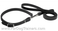 Police and Hunting Dog Leash and Collar Combo