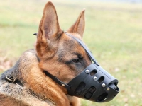 Everyday German Shepherd Leather Dog Muzzle