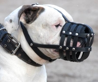 Everyday Light Weight Super Ventilation American Bulldog muzzle - product code   M41
