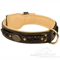 Royal Nappa Padded Hand Made Leather Dog Collar - Fashion Exclusive Design - code  C43