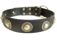 Handcrafted Leather Dog Collar with Silver  Plated Brooches