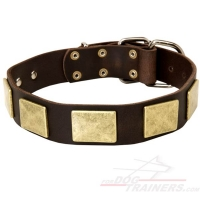 War Style  Leather Dog Collar Decorated with Rustless  Plates