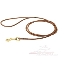 Show Leather Dog Leash with Brass Snap Hook