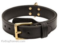 2 ply Leather Agitation Dog Collar