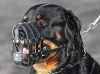 Everyday Light Weight Super Ventilation Rottweiler muzzle - product code   M41