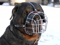 Basket Wire Dog Muzzle Light For Rottweiler - M4light