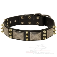 Gorgeous War Dog Leather Dog Collar - C87 (old nickel massive plates +3 brass spikes)