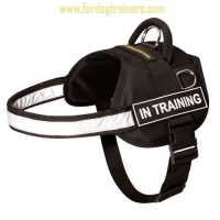 Service Nylon Dog Harness for Any Weather with Reflective Strap