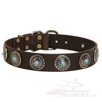 Classy Leather Dog Collar with Silver-like Conchos and Blue Stones