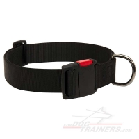 ALL WEATHER ADJUSTABLE Nylon Dog Collar with QUICK RELEASE BUCKLE