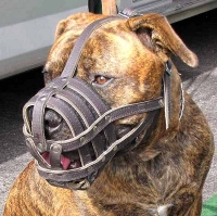 Adjustable Leather Cage Muzzle for Boerboel and Other Large Breed Dogs