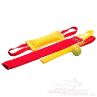 Buy Now Puppy Training Set and Get Great Training Toy ( value $5.9) - Set (BiteTug+pocket toy+bite rag) 3485