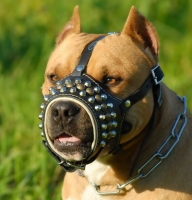 Royal Studded Leather Dog Muzzle - product code   M62