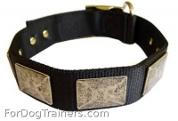 Decorated Black Nylon Dog Collar for Any Weather Use
