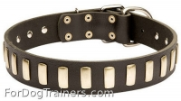 Wide Leather Dog  Collar with Goldish Smooth Plates