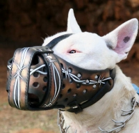 Handmade Leather Dog Muzzle with Barbed Wire Painting