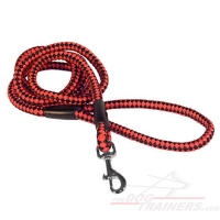Easy Walking Cord Nylon Lightweight Dog Leash