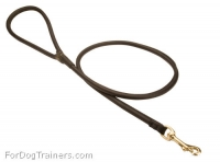 Handcrafted Rolled Leather Dog Leash for Walking and Tracking
