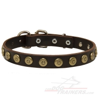 Gorgeous Leather Dog Collar Decorated with Line of Dotted Studs