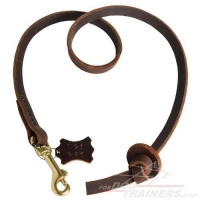 Professional Pocket Power Walker Leather Dog Leash