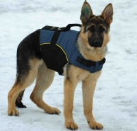 30% Discount - NEW 2018 All Season Extra Strong Nylon Vest Harness - H13-Outdoor(German Shepherd)