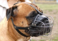 Metal Basket Dog Muzzle for Free Breathing and Drinking