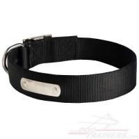 All Weather Nylon Dog Collar with Name Plate