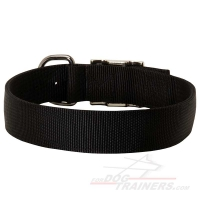 Nylon Dog Collar - 2 Ply Nylon, Nickel Plated Buckle and D-ring, very Wide