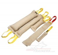 Buy Now Jute Dog Training Set and Get Amazing Gift ( value $15.29)