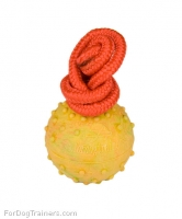 2 inch Training Dog  Ball on Rope  of Hollow Rubber -  Small