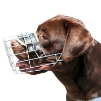 New High quality Wire Dog MUZZLE  for Labrador