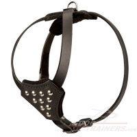 Designer Leather Dog Harness with Adjustable Straps for Puppy Walking and Training