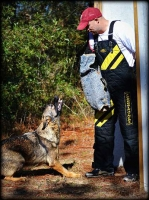 Pro Bite Protection Training Set - Bite Sleeve, Removable Cover, Bamboo Stick, a PRESENT - Extra Cover for FREE