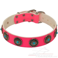 Pink Leather Dog Collar with Studs for Walking