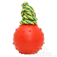 Solid Rubber  Dog Ball Water Toy - Medium Size