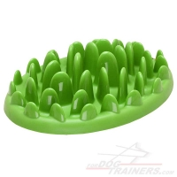 """Grassy Plate"" Interactive Pet Feeder for Small Breeds"