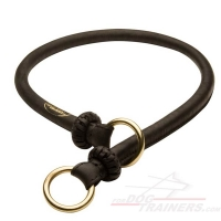 "NEW 2018 ""Best Trainer"" Exquisite Round Leather Silent Choke Collar"