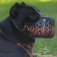 "Exclusive Hand Painted ""Fire Flames"" Cane Corso Dog Muzzle"