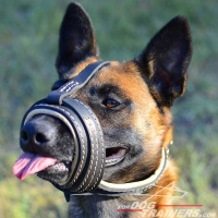 Loop-Like Nappa Padded Leather Malinois Muzzle