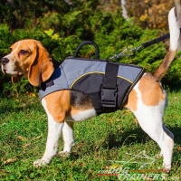 Adjustable Nylon Beagle Harness for Rehabilitation and Winter Warming