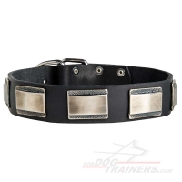 Royal Plated Leather Dog Collar for Walking and Basic Training