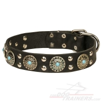 'Ace Style' Leather Dog Collar with Silver-like Decorations