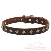 'Yellow Star' Fashionable Dog Collar with Old-Like Bronze Decoration