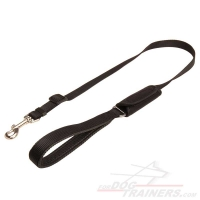 Safe-&-Sound Car Trip Nylon Dog Leash